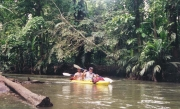 Kayaking Thru the Jungle, Tortuguero