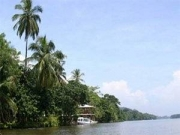 Luxury Near the Jungle, Tortuguero