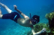 Spectacular Underwater World (4 days/3 nights package)