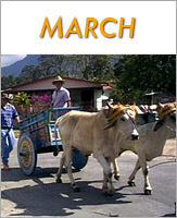 March - Click to see events